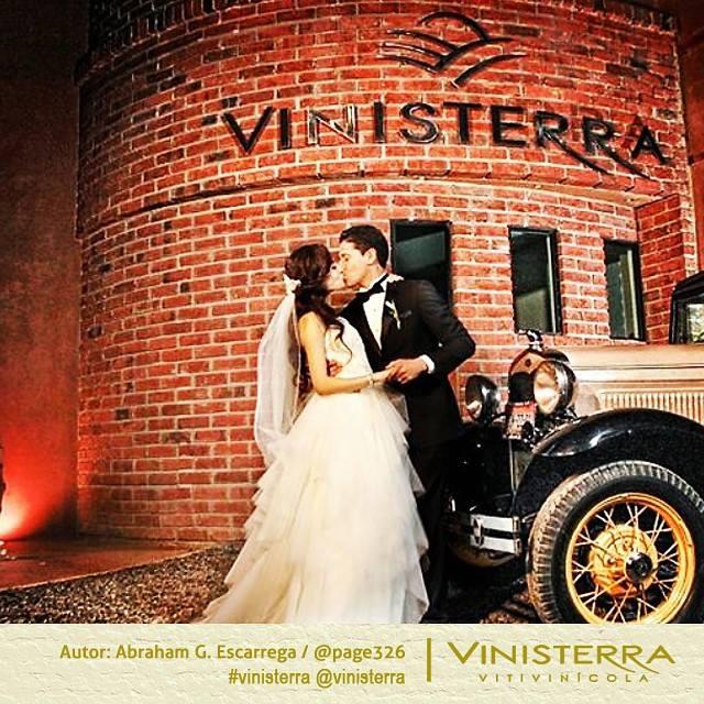 Vinisterra Vitivinícola