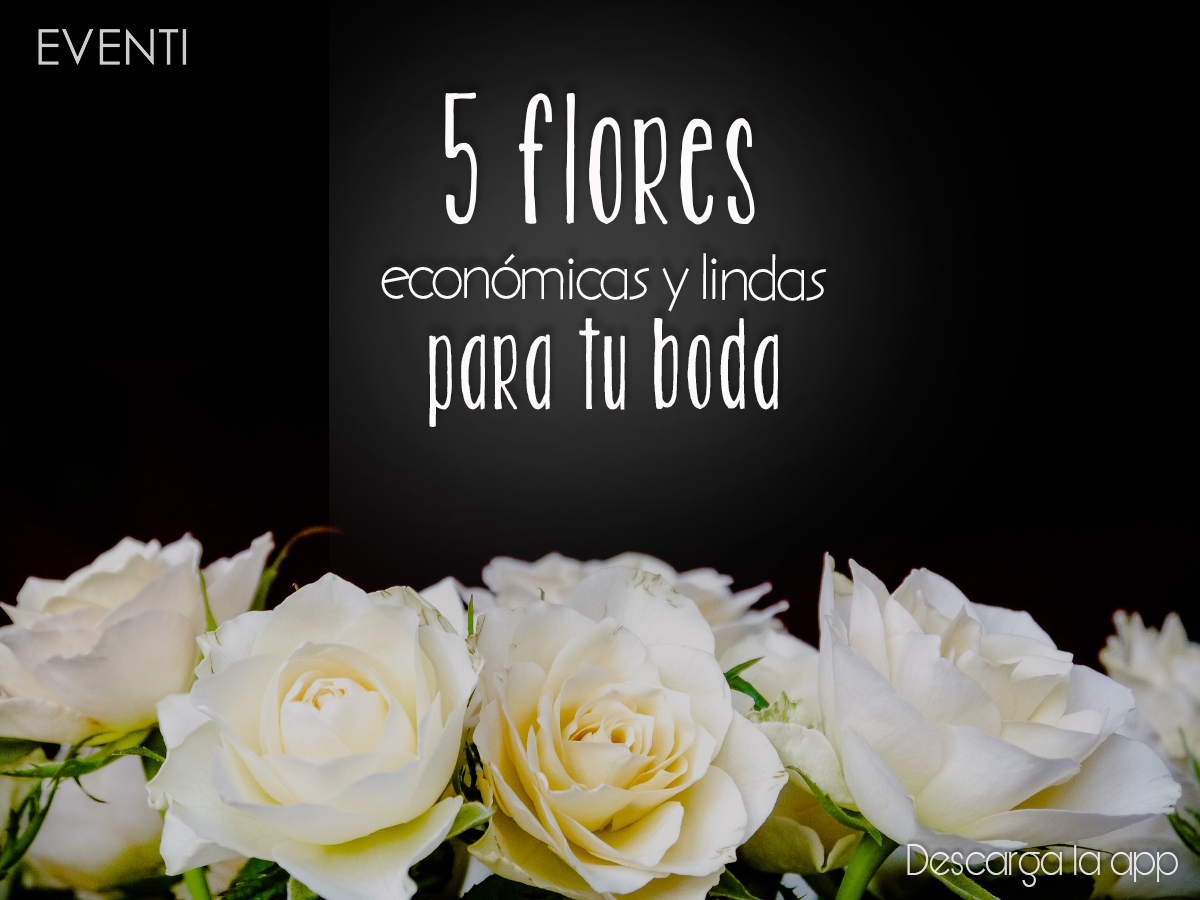 Las 5 flores más económicas y lindas para tu Boda